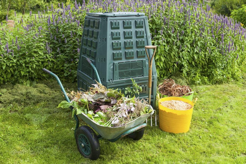 Kompost i jego magiczne właściwości
