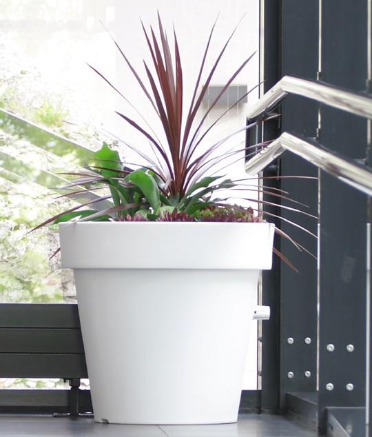 Duże Donice Plastikowe Z Roślinami Sposób Na Oczarowanie