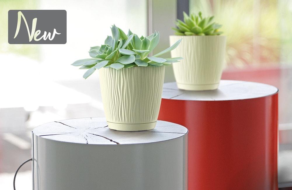 Nowości Prosperplast Doniczki Plastikowe Na 2019r