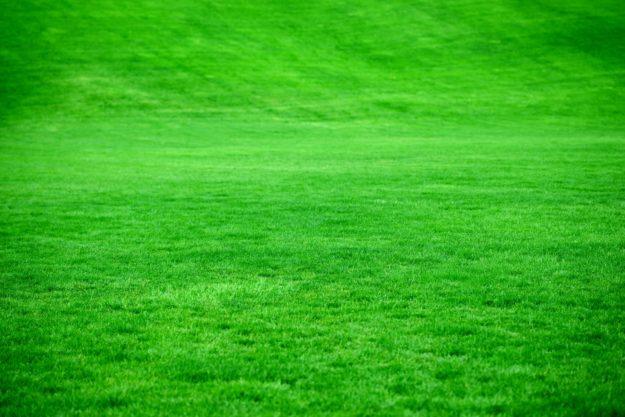 Trawnik Doniczki Plastikowe