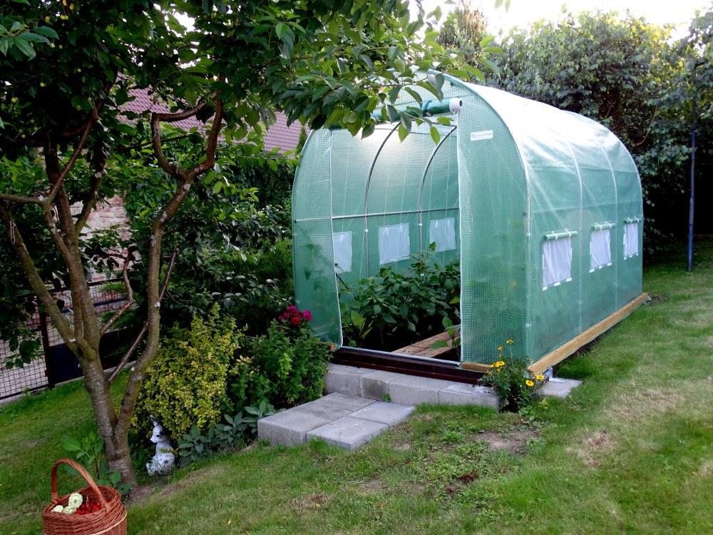Warzywa Z Własnego Ogrodu Tunel Foliowy Ułatwi Zadanie
